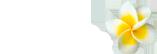 Breakas Logo